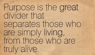 Purpose-is-the-great-divider-that-separates-those-who-are-simply-living